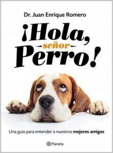 """Dr. Romero: """"El principal error es criar a los perros como hijos"""""""