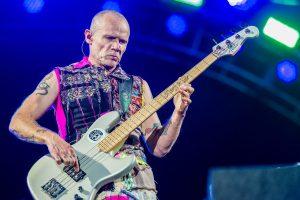 ¡Feliz cumpleaños Flea!