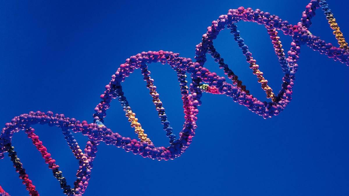 El futuro de la salud: la manipulación de los genes para prevenir enfermedades - Radio Cantilo