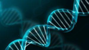 El futuro de la salud: la manipulación de los genes para prevenir enfermedades