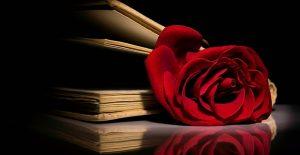 ¿Cómo se construye la novela romántica?