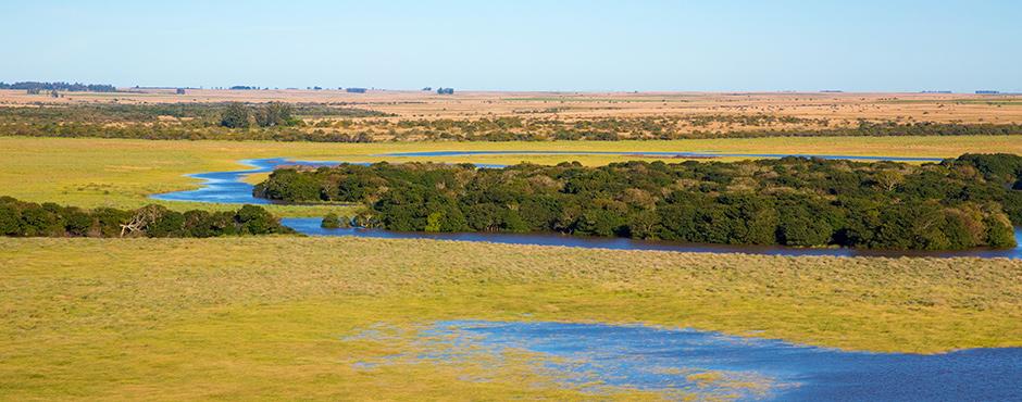 ¡La Reserva Natural Iberá se convirtió en Parque Nacional! - Radio Cantilo