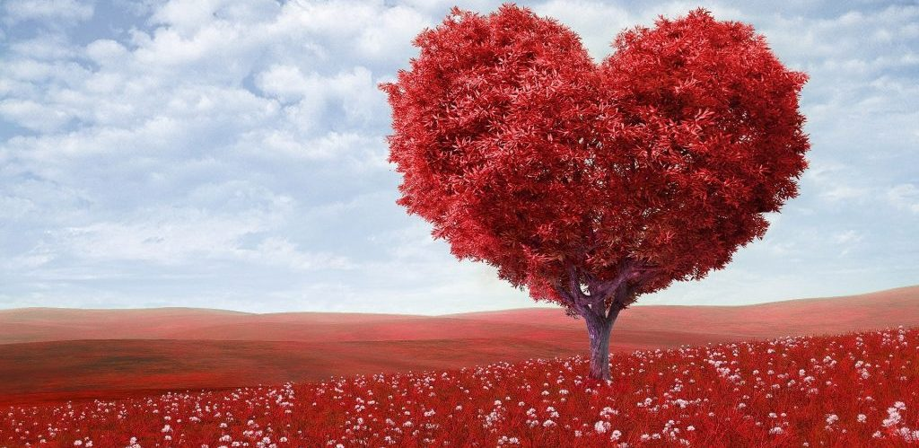 10 Playlist para celebrar el amor - Radio Cantilo