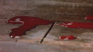 Lo normal es paranormal: la casa que sangraba