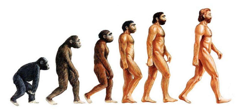 Mitos y verdades acerca del proceso evolutivo de la raza humana - Radio Cantilo