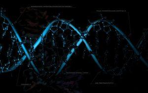 Almacén de Ciencia, un servicio para personas curiosas