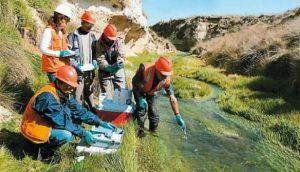 ¿Cómo se hace el estudio de impacto ambiental para un recital?