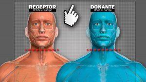 Cuando la ciencia y la ética se enfrentan: ¿Es posible realizar un trasplante de cabeza?