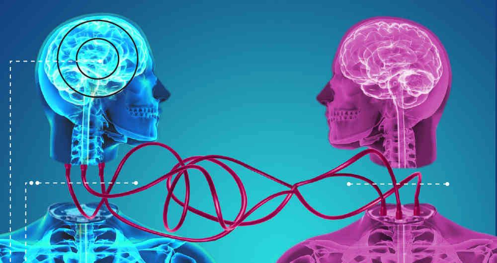 Cuando la ciencia y la ética se enfrentan: ¿Es posible realizar un trasplante de cabeza? - Radio Cantilo