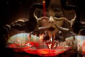 Björk y Martel en Nueva York: naturaleza y Cornucopia