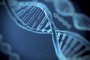 Bitgenia: Toda tu información genética al alcance de la mano