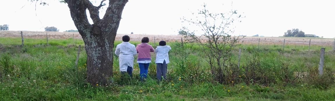 La lucha docente contra los agrotóxicos - Radio Cantilo
