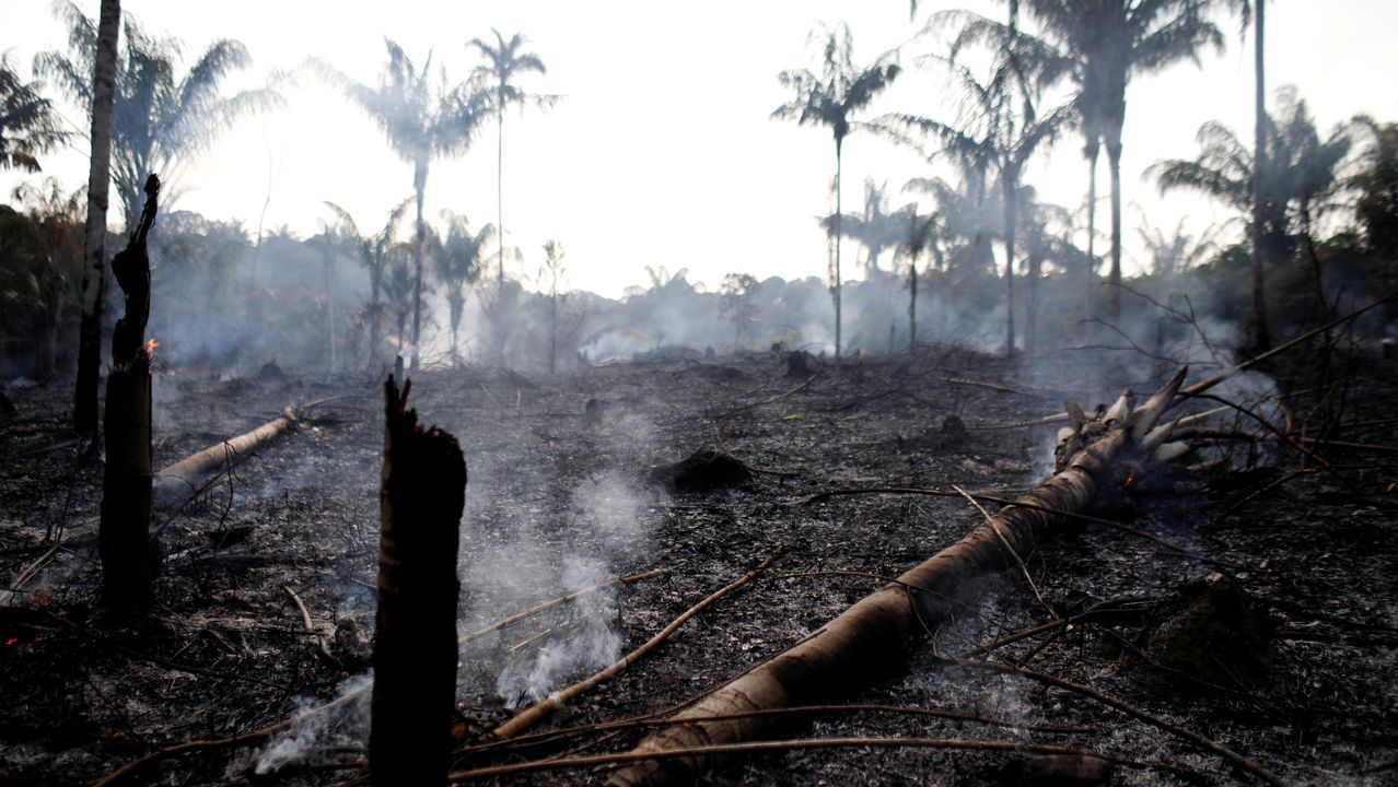 El Amazonas en llamas: la alarmante situación que azota a la selva brasileña - Radio Cantilo