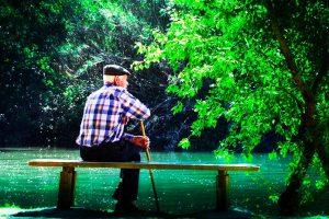 Jueves de cuentos: Viejo con árbol