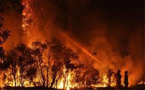 Incendio y estado de emergencia en Australia, ¿qué tan grave es?