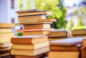 ¿Cómo se trabajan las crónicas desde la literatura?