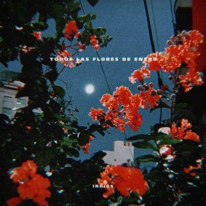 """Cómo se gestó """"Todas las flores de enero"""", el nuevo single de Indios"""