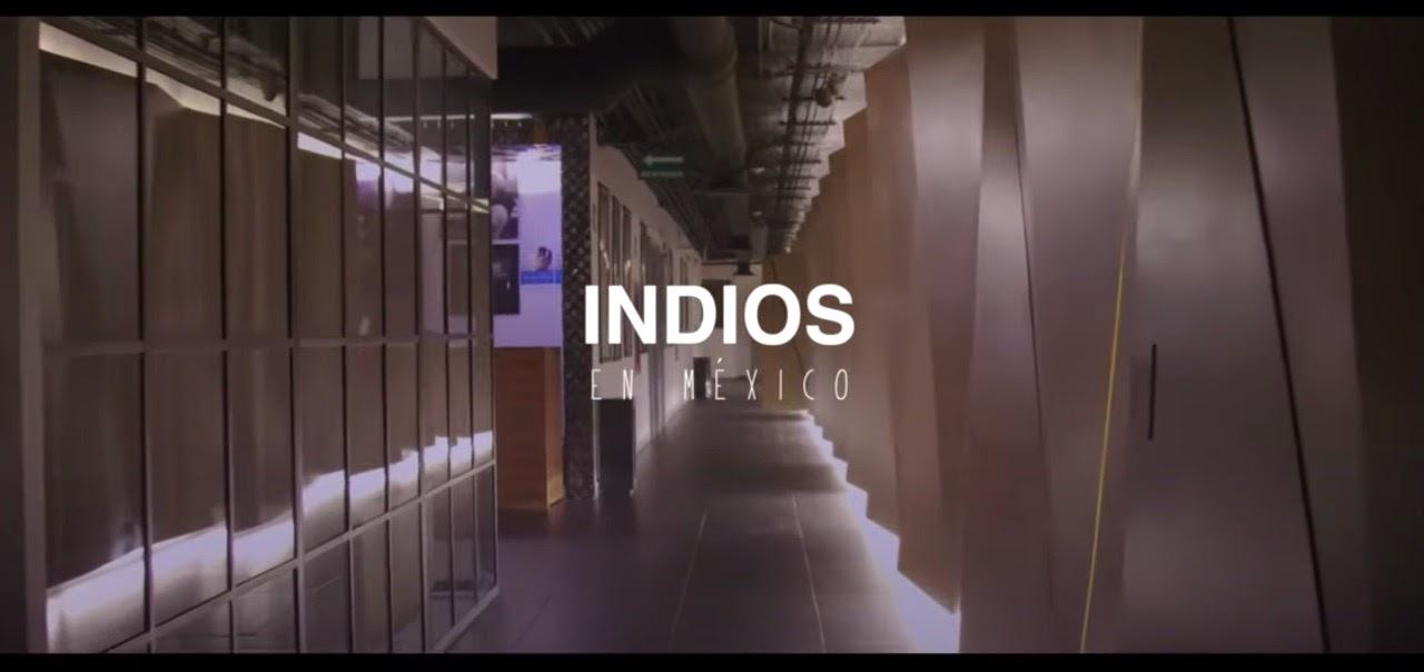 """Cómo se gestó """"Todas las flores de enero"""", el nuevo single de Indios - Radio Cantilo"""