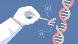 ¿Podemos modificar y mejorar nuestros genes con una computadora?